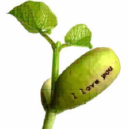 Comm.plantes